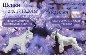 http://melodiyavesny.ru/FotoAlbum/S/01de032fdc.jpg